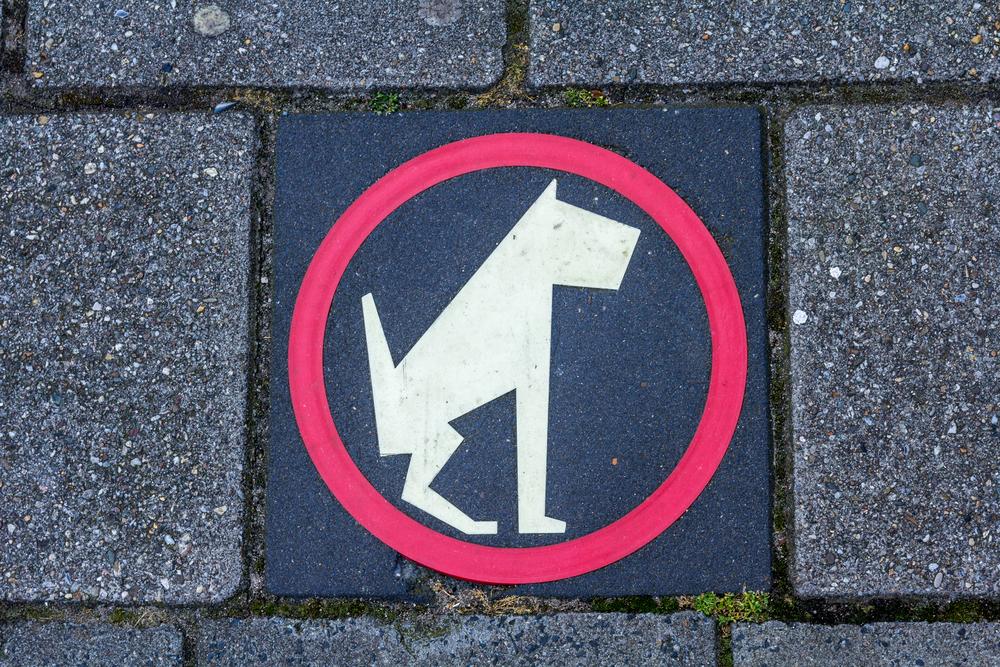 No dog poop vector sign