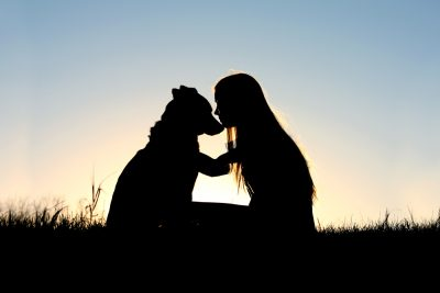 A special and serene moment as a girl is lovingly hugging her German Shepherd Dog