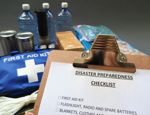 Is Your Pet Prepared for a Disaster?